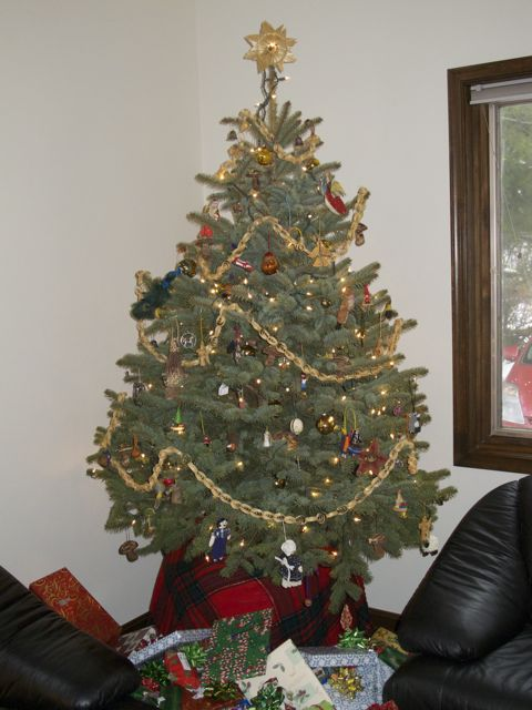 2009-xmas-tree-decorated_0