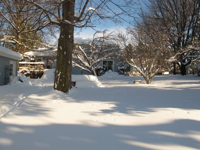 big-snow-of-2009