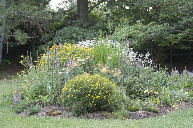 front-perennial-garden