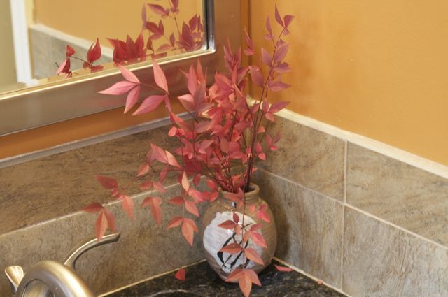 nandina-in-pot