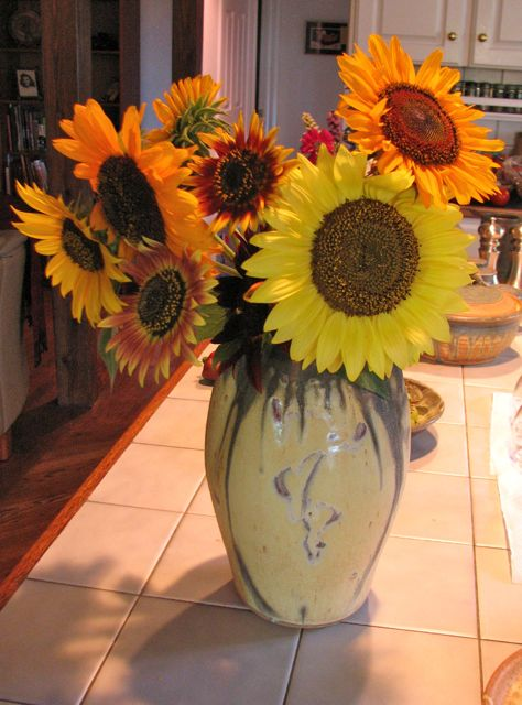 sunflowers-by-beth