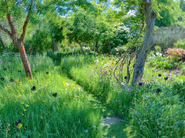 My impression of the Meadow at Shepherd House Garden