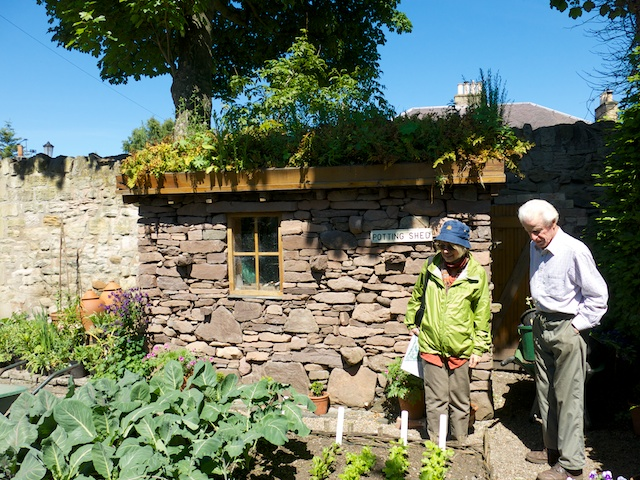 hings like the stone-built potting shed are examples of the yearly projects the Frasers take on. Note the green roof.