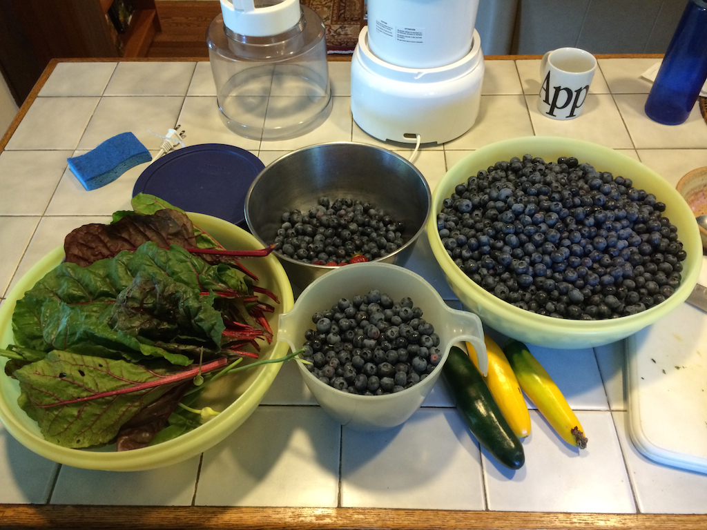 Gallons of Blueberries