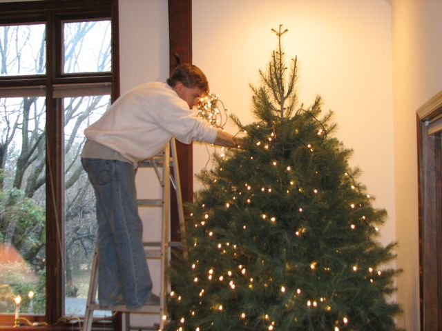 and-the-raising-of-the-tree